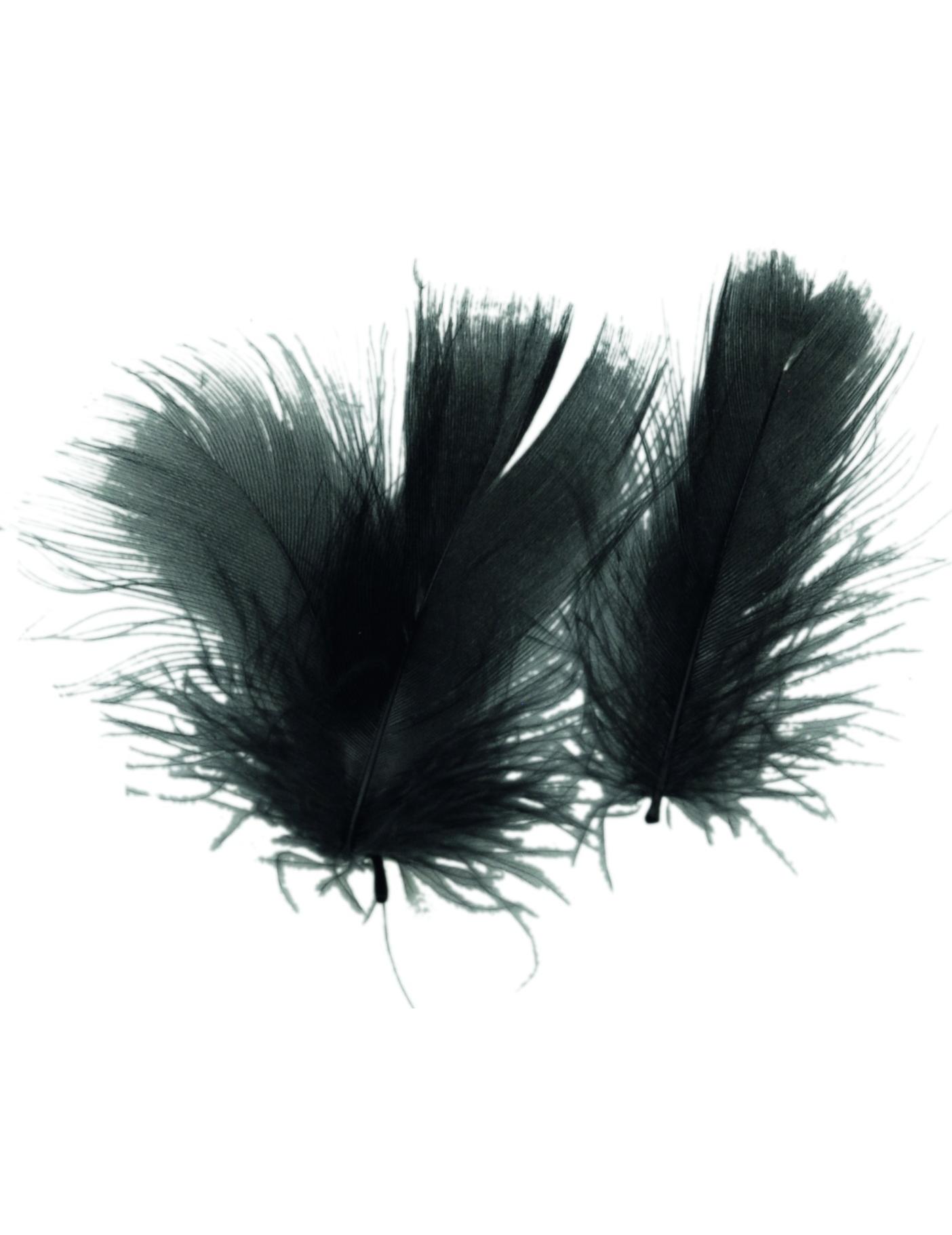 federn schwarz partydeko und g nstige faschingskost me vegaoo. Black Bedroom Furniture Sets. Home Design Ideas