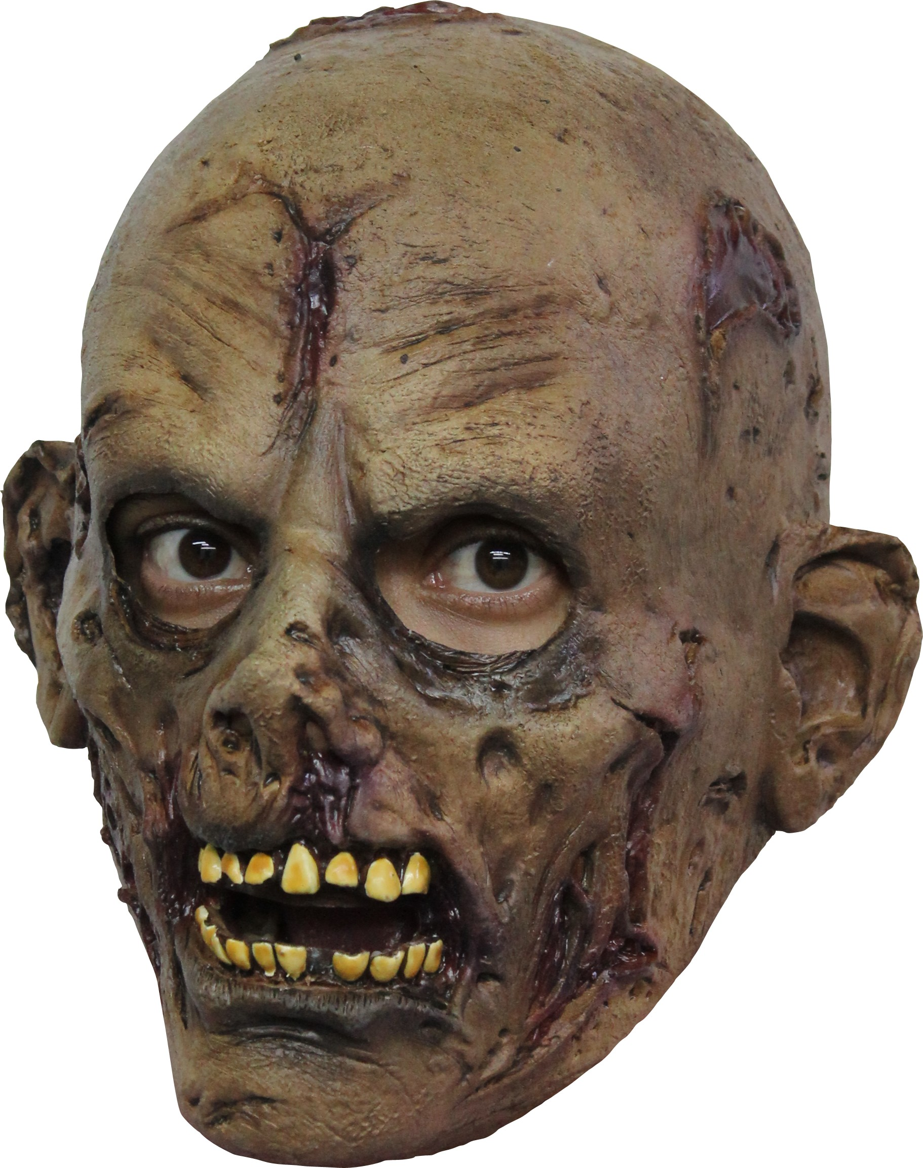 zombie maske halloween f r kinder masken und g nstige. Black Bedroom Furniture Sets. Home Design Ideas