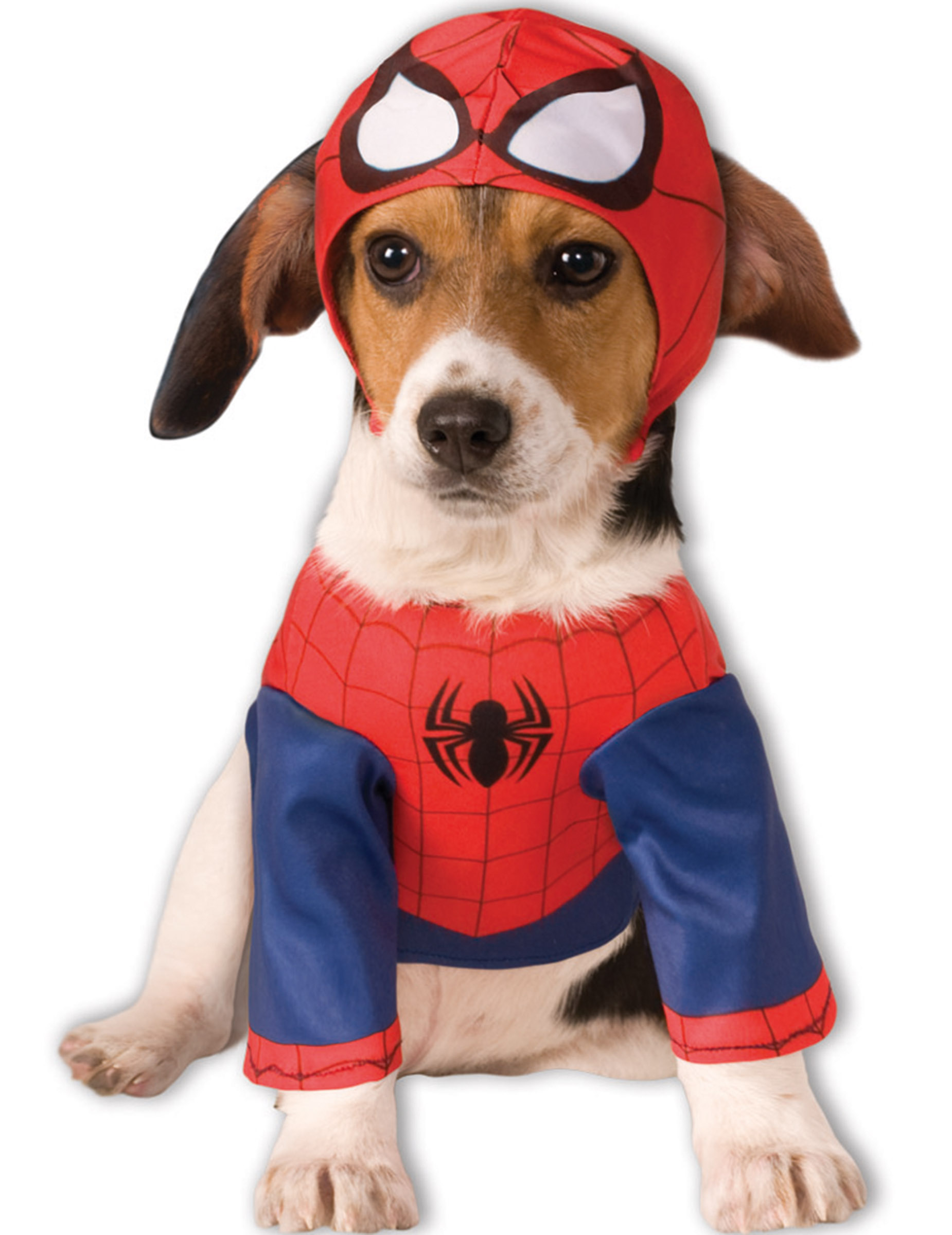 spiderman kost m f r hunde accessoires und g nstige faschingskost me vegaoo. Black Bedroom Furniture Sets. Home Design Ideas