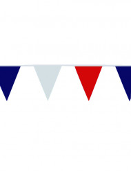 Fan-Wimpelgirlande Tricolore