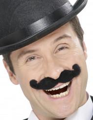 Music hall-Schnurrbart für Erwachsene
