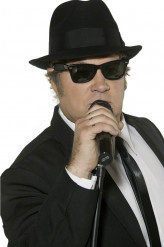 Offizielle Blues Brothers-Brille, für Erwachsene