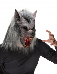 Werwolfsmaske für Erwachsene zu Halloween
