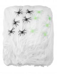 Spinnennetz groß Halloween 500g mit Spinnen