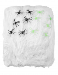 Spinnennetz groß Halloween