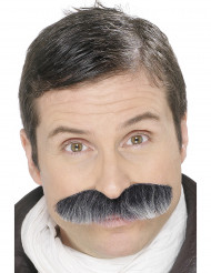Dicker graumelierter Schnurrbart für Erwachsene