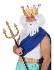 Weiße Perücke Gott des Olymp für Herren