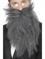 Langer grauer Bart für Herren