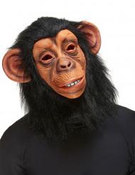 Affen-Maske für Erwachsene