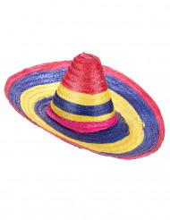 Sombrero für Erwachsene bunt 50cm