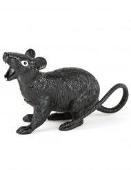 Ratte Halloween