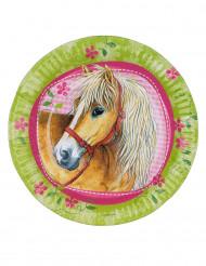 Teller - Pferd
