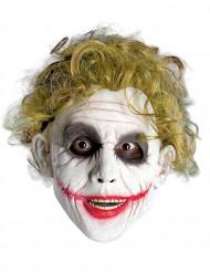 Perücke Joker™ für Erwachsene
