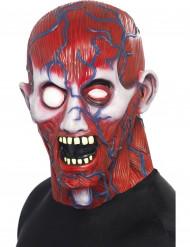Anatomie Integralmaske für Erwachsene Halloween