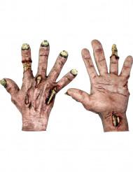 Handschuhe grusliger Zombie Halloween für Erwachsene aus Latex