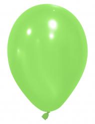 24 Luftballons - grün