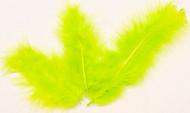 20 grüne Zierfedern