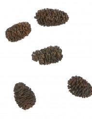 12 Mini-Tannenzapfen