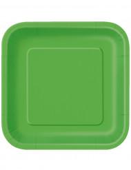 14 grüne Teller 23 cm