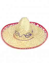 Sombrero Hut für Erwachsene