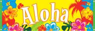 Aloha Hawaii-Banner
