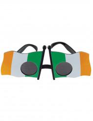 Irische Flagge - Brille für Erwachsene