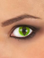 Originelle Kontaktlinsen Reptil
