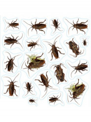 Insekten Aufkleber