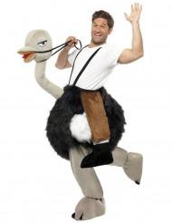 Straußenreiter-Kostüm für Erwachsene