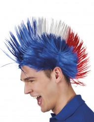 Frankreich-Punk-Perücke