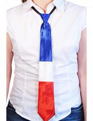 Frankreich-Krawatte