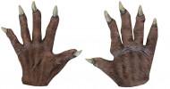 Halloween kurze Vampir-Handschuhe für Erwachsene