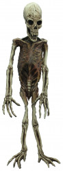 Halloween Affen-Skelett-Deko