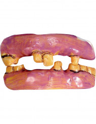 Gebiss aus alten Zähnen