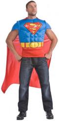 Superman™-Hemdbrust für Erwachsene