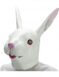 Hasen-Maske aus Latex für Erwachsene