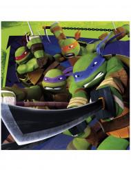 20 Ninja Turtles™ Papier Servietten