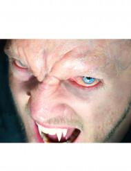 Vampir-Stirn Abziehbild Premium