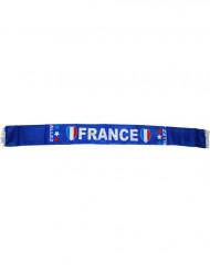 Frankreich Schal