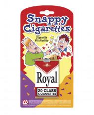 Scherzartikel Zigarettenschachtel
