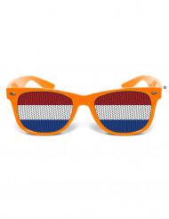 Witzige Fan Brille Niederlande