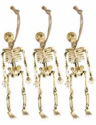 Gehängte Skelette Halloween Dekoration