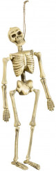 Halloween Skelett zum Aufhängen