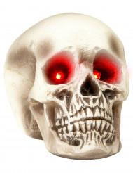 Halloween Schädel mit leuchtenden Augen