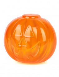 Transparente Kürbis Box Halloween