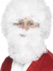 Weihnachtsmann Set für Erwachsene Perücke und Bart
