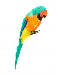 Bunter Papagei Kostüm Accessoire