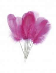 12 Federn zum Dekorieren pink