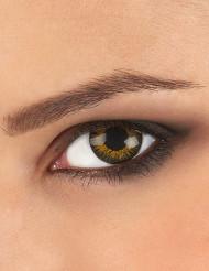 Kontaktlinsen in 3 Goldtönen