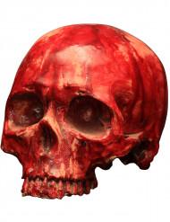 Blutiger Schädel